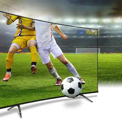 TV Reparatur Hockenheim